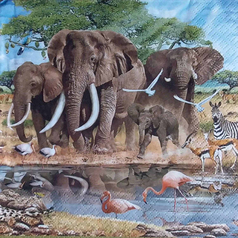 картинки для декупажа природа и животные африки видел
