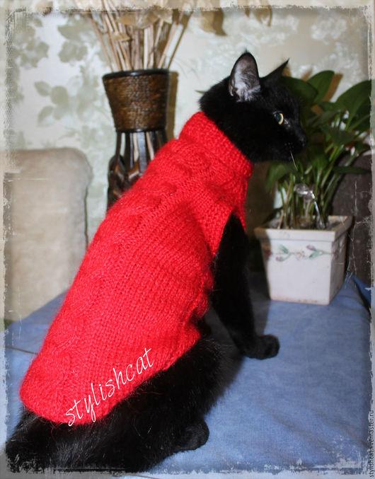 Одежда для кошек, ручной работы. Ярмарка Мастеров - ручная работа. Купить Свитер для котов и кошек. Handmade. Одежда для кошек