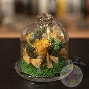 Флорариумы ручной работы. Ярмарка Мастеров - ручная работа Флорариум - слонцу на столе. Handmade.