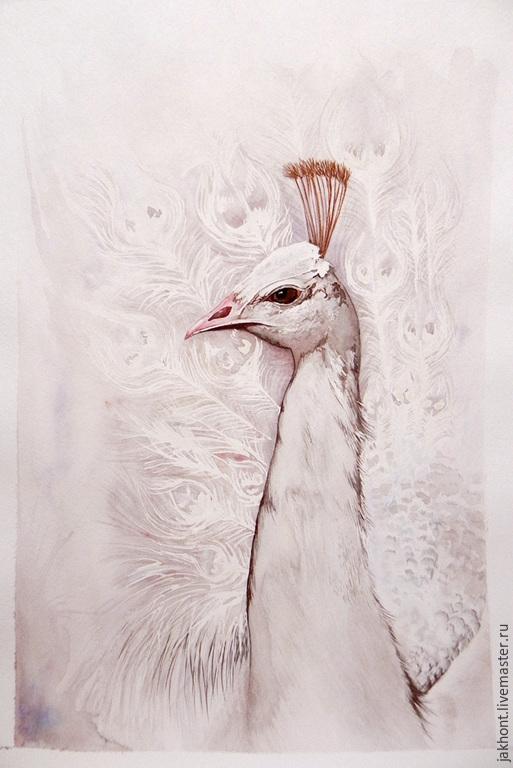 Животные ручной работы. Ярмарка Мастеров - ручная работа. Купить Картина акварелью Белый павлин. Handmade. Белый, акварель, птицы