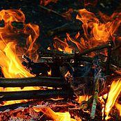 """Картины и панно ручной работы. Ярмарка Мастеров - ручная работа """"Огненный танец"""".Фотокартина.. Handmade."""