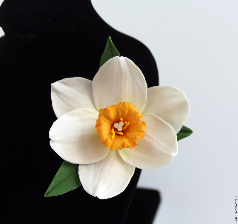 Подарок цветок нарцисс