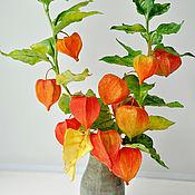 Растения ручной работы. Ярмарка Мастеров - ручная работа Растения: Физалис. Handmade.