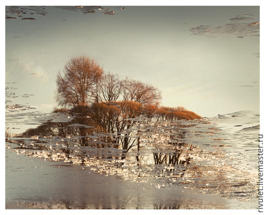 Авторская фото картина для интерьера на заказ. Осенний пейзаж «Хрустальная дорога Осени» © Елена Ануфриева