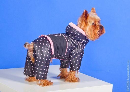 """Одежда для собак, ручной работы. Ярмарка Мастеров - ручная работа. Купить Комбинезон """"Сердечко Мое"""". Handmade. Одежда для собак, собака"""