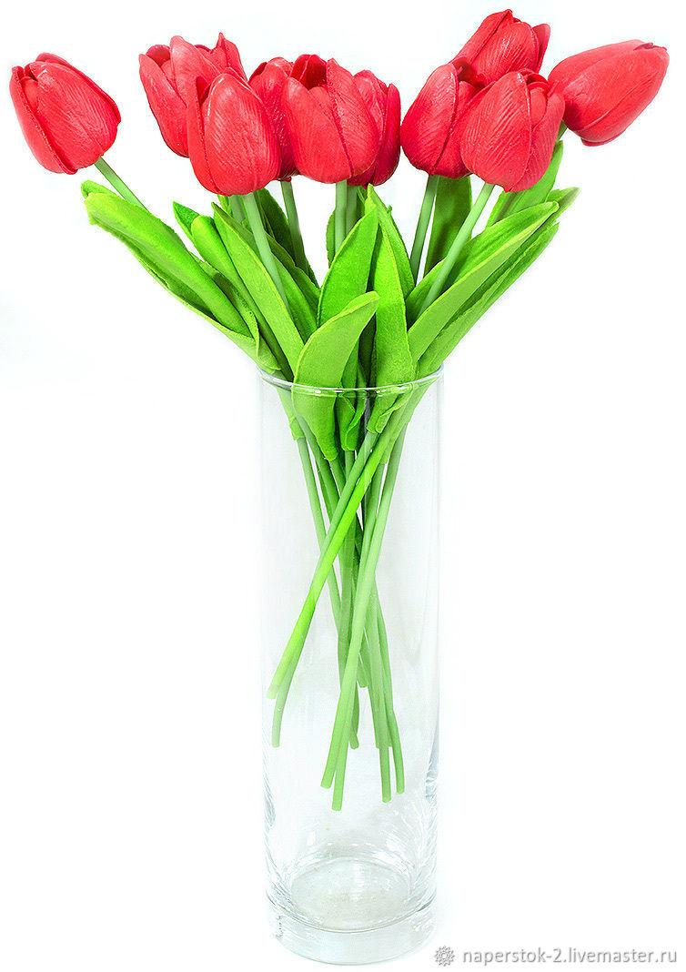 Тюльпан красный, Цветы, Москва,  Фото №1