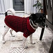 Одежда для питомцев ручной работы. Ярмарка Мастеров - ручная работа Свитер для собак от Элен Овчинниковой. Handmade.