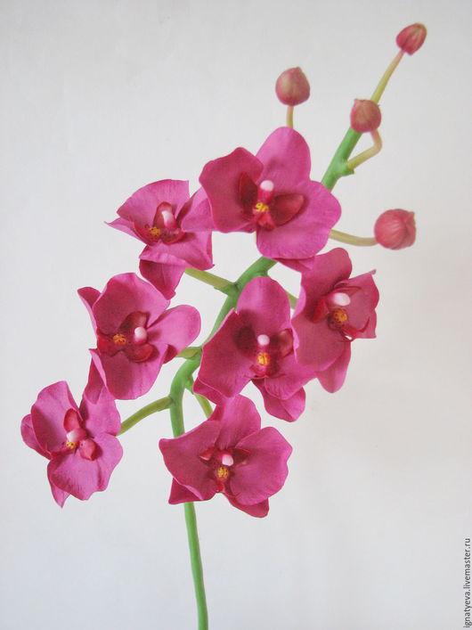 Искусственные растения ручной работы. Ярмарка Мастеров - ручная работа. Купить Орхидея фаленопсис из полимерной глины. Handmade. Бордовый