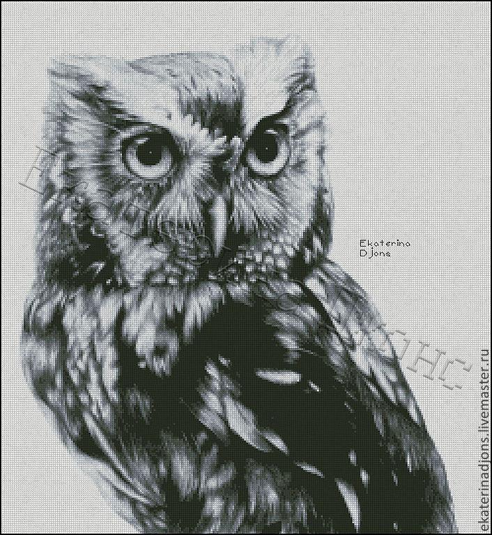 Мудрая сова. Авторская схема