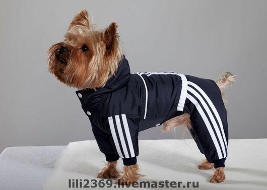 """Одежда для собак, ручной работы. Ярмарка Мастеров - ручная работа. Купить Спортивный комбинезон """"adidas"""". Handmade. Спортивная одежда, Плащёвка"""