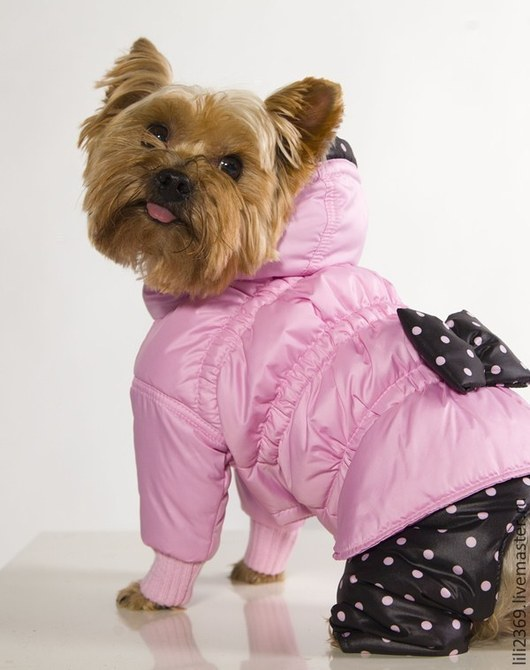 """Одежда для собак, ручной работы. Ярмарка Мастеров - ручная работа. Купить Комбинезон """"Розовая мечта"""". Handmade. Собаки, Йоркширский терьер"""