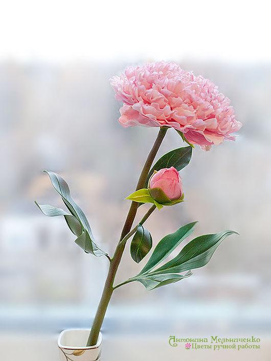 Цветы ручной работы. Ярмарка Мастеров - ручная работа. Купить Пион из полимерной глины. Handmade. Цветы, бледно-розовый