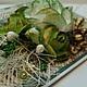 Конверт для денег `Зеленые розы`_другой вариант