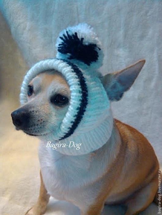 Одежда для собак, ручной работы. Ярмарка Мастеров - ручная работа. Купить Шапки для собак ( чихуа ). Handmade.