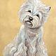 Портреты собачек выполнялись по индивидуальному заказу для оформления салона стрижки собак.