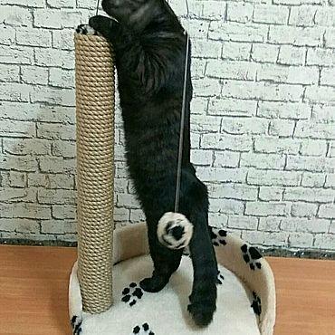 """Товары для питомцев ручной работы. Ярмарка Мастеров - ручная работа Когтеточка для котят """"Забава"""". Handmade."""