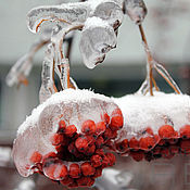 Картины и панно ручной работы. Ярмарка Мастеров - ручная работа Ледяная рябина. Handmade.