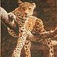 Животные ручной работы. Ярмарка Мастеров - ручная работа. Купить Отдыхающий леопард (ручная вышивка). Handmade. Вышивка, вышивка ручная