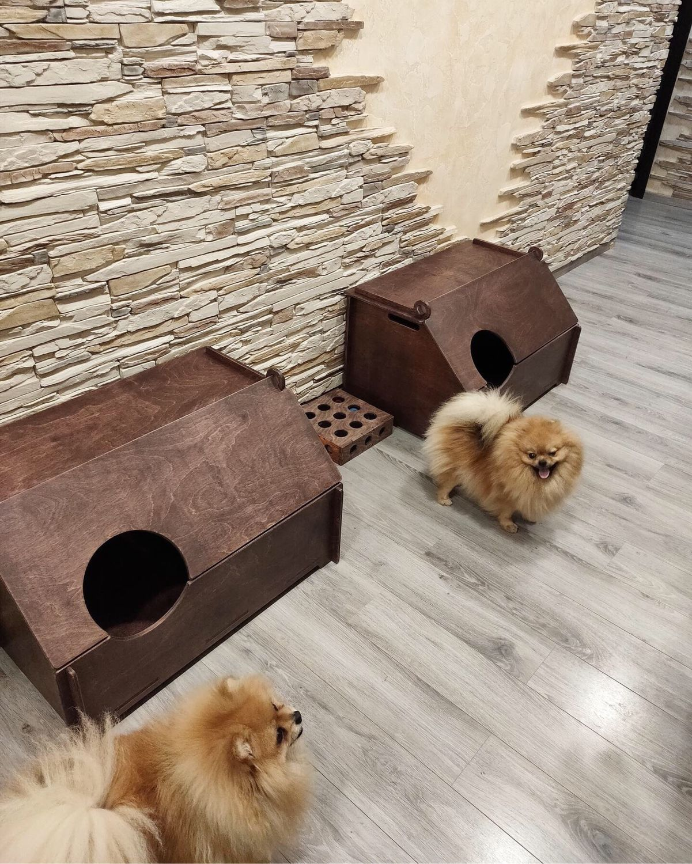 Магазины для собак ухта