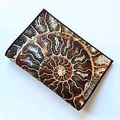 Сумки и аксессуары handmade. Livemaster - original item Passport cover made of Ammonite leather. Handmade.