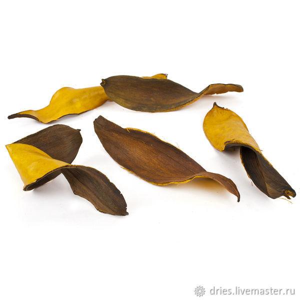 Материалы:  тиборна листья жёлтые, , Москва, Фото №1