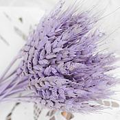 Цветы и флористика ручной работы. Ярмарка Мастеров - ручная работа Шебби-колосья сиреневые сухоцвет букетик. Handmade.