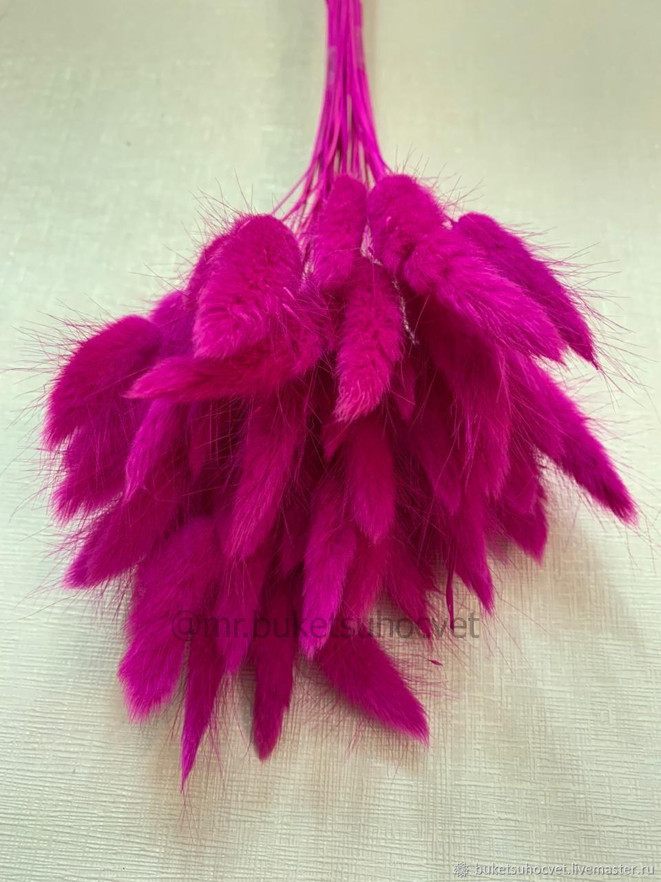 Лагурус ярко-розовый 50см- 50штук, Цветы, Москва,  Фото №1