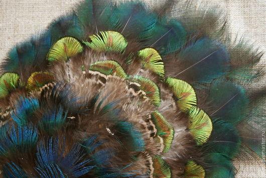 Другие виды рукоделия ручной работы. Ярмарка Мастеров - ручная работа. Купить Пух павлина. Handmade. Пух, пух