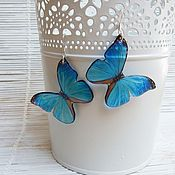 Украшения handmade. Livemaster - original item Transparent Earrings Blue Butterfly. Handmade.