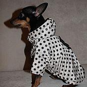 """Для домашних животных, ручной работы. Ярмарка Мастеров - ручная работа Плащик для собаки """"ШАРМ"""". Handmade."""