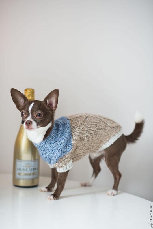 Одежда для собак, ручной работы. Ярмарка Мастеров - ручная работа. Купить свитер для собачки. Handmade. Комбинированный, одежда для собак на заказ