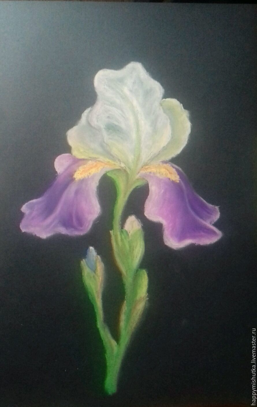 Drawing with pastel flowers iris shop online on livemaster with flower paintings handmade livemaster handmade buy drawing with pastel flowers iris izmirmasajfo