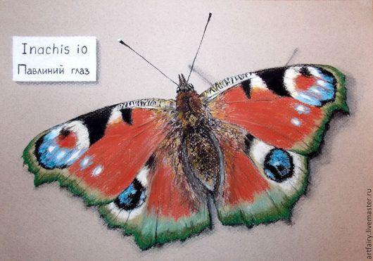 Бабочка Павлиний глаз 21х30 см Пастель Картина на заказ пастелью
