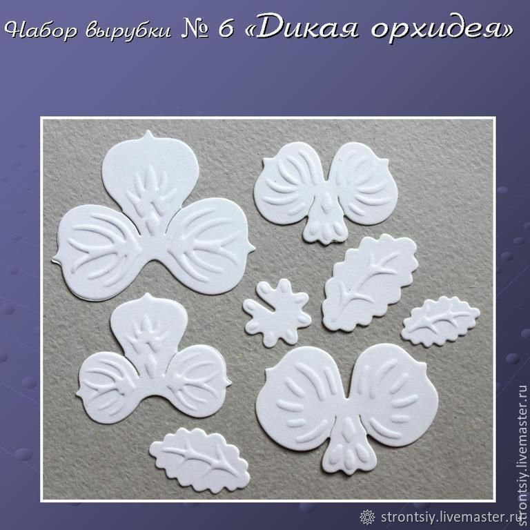 Cutting set # 6 ' wild Orchid', Scrapbooking cuttings, Rostov-on-Don,  Фото №1