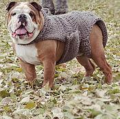 Для домашних животных, ручной работы. Ярмарка Мастеров - ручная работа Boo, вязаный свитер/комбинезон для отважного пса. Handmade.