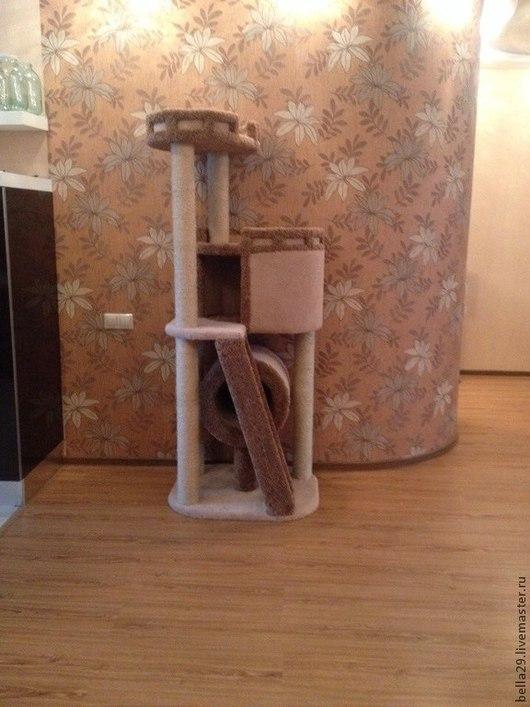 Аксессуары для кошек, ручной работы. Ярмарка Мастеров - ручная работа. Купить Юта. Handmade. Разноцветный, Когтеточка, дсп, сизаль