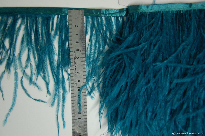 Trim of ostrich feathers 10-15 cm laguna, braid, Moscow,  Фото №1