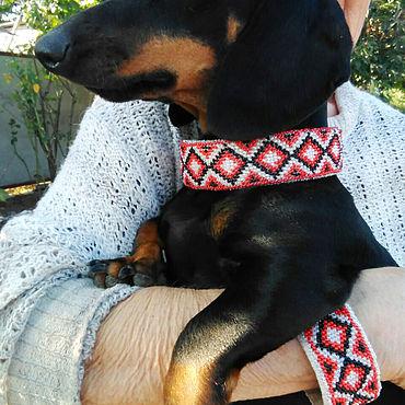 Товары для питомцев ручной работы. Ярмарка Мастеров - ручная работа Ошейник для собаки и браслет хозяину, вышитые бисером. Handmade.