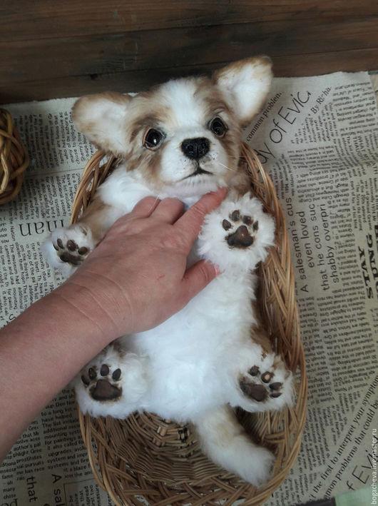 Мишки Тедди ручной работы. Ярмарка Мастеров - ручная работа. Купить Вельш Корги щенок. Handmade. Белый, мех искусственный