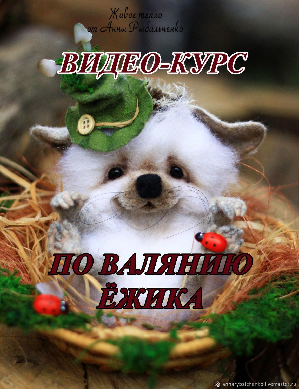 Видео мастер-класс по валянию ёжика, Мягкие игрушки, Краснодар, Фото №1