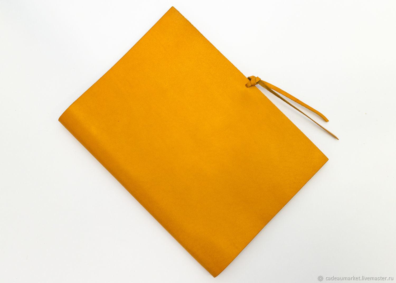 Document case, portfolio A4, Folder, Moscow,  Фото №1