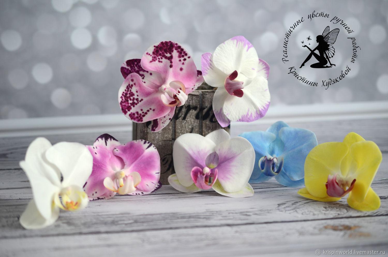 Орхидея девушке в подарок 39