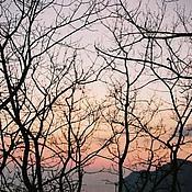 Картины и панно ручной работы. Ярмарка Мастеров - ручная работа фотокартина - на закате. Handmade.