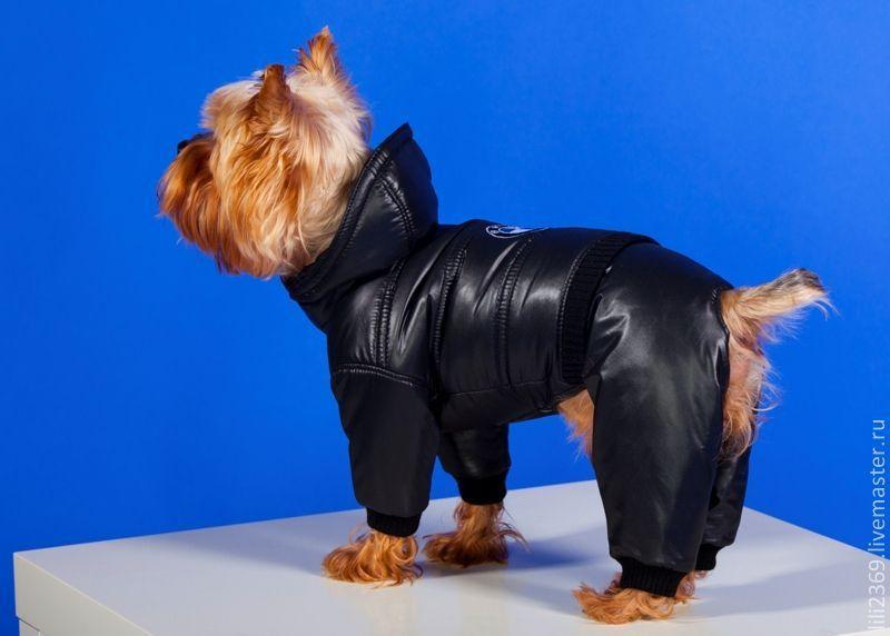 Одежда для собак москва интернет магазин