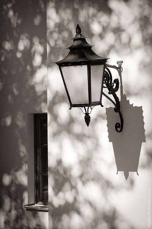 Черно-белая художественная фотография «Свет в тени клена» – Павловск, Россия – Елена Ануфриева.
