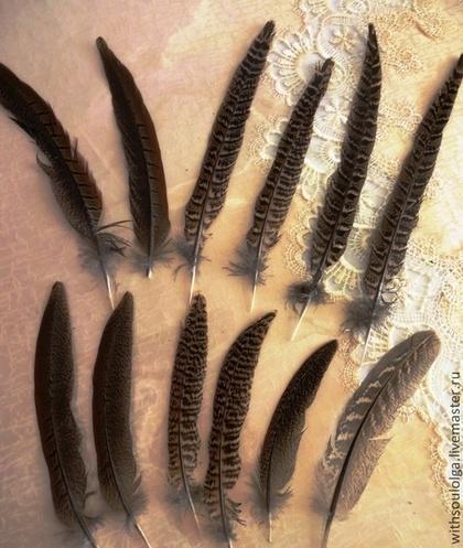 Другие виды рукоделия ручной работы. Ярмарка Мастеров - ручная работа Перья фазана натуральные неокрашенные. Handmade.