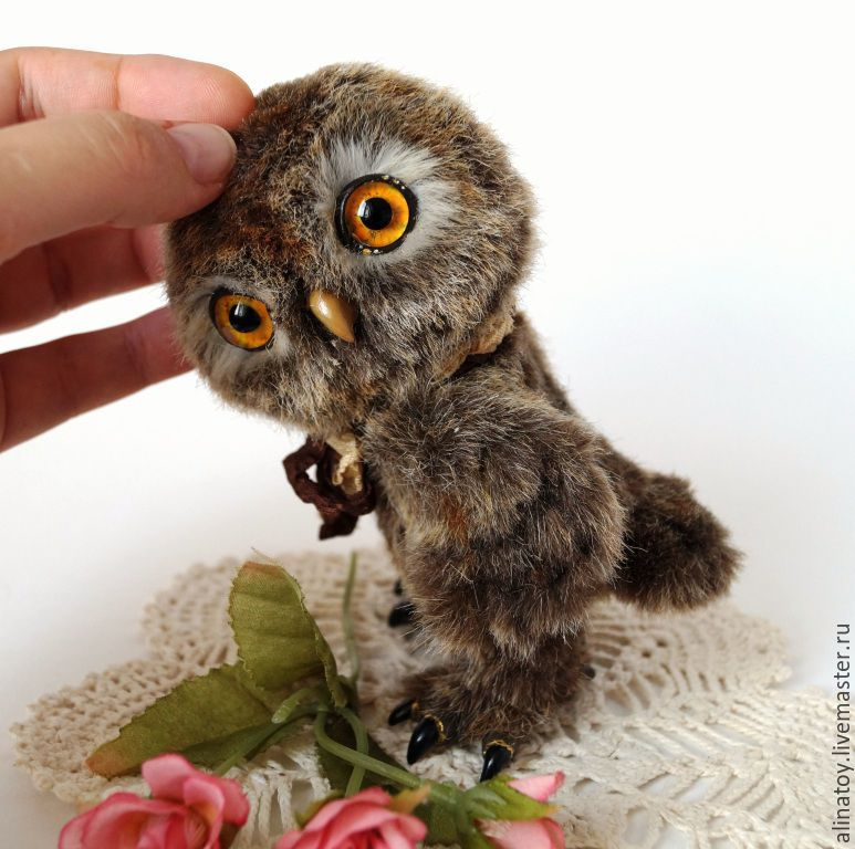 list of synonyms and antonyms of the word owlet