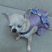 """Платье для маленькой собачки """" Виола """""""