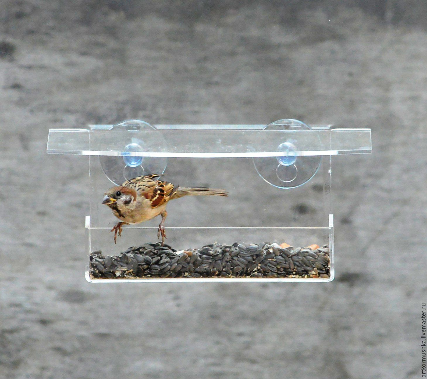 Оконная кормушка для птиц на присосках