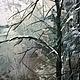 Пейзаж ручной работы. Ледяная речка. Андрей Дубровский. Интернет-магазин Ярмарка Мастеров. Зима, в подарок, масло